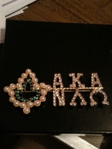 AKA 20 Pearls Ivy Leaf NU LAMBDA OMEGA Chapter Pin