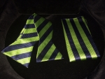 Navy Blue & Green Striped Bow Tie