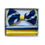 Double Layered Royal and Yellow Bowtie