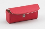 Apple Red Lipstick Case