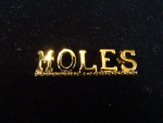 MOLES GOLD/SILVER PLATED LAPEL PIN